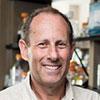 David A. Leib, PhD